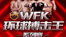 WFK环球搏击王